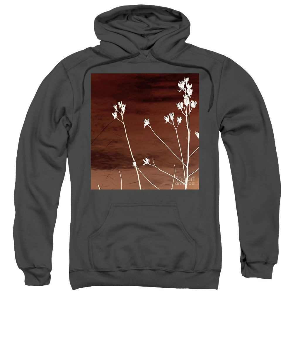 Flowers Sweatshirt featuring the photograph Floral by Amanda Barcon
