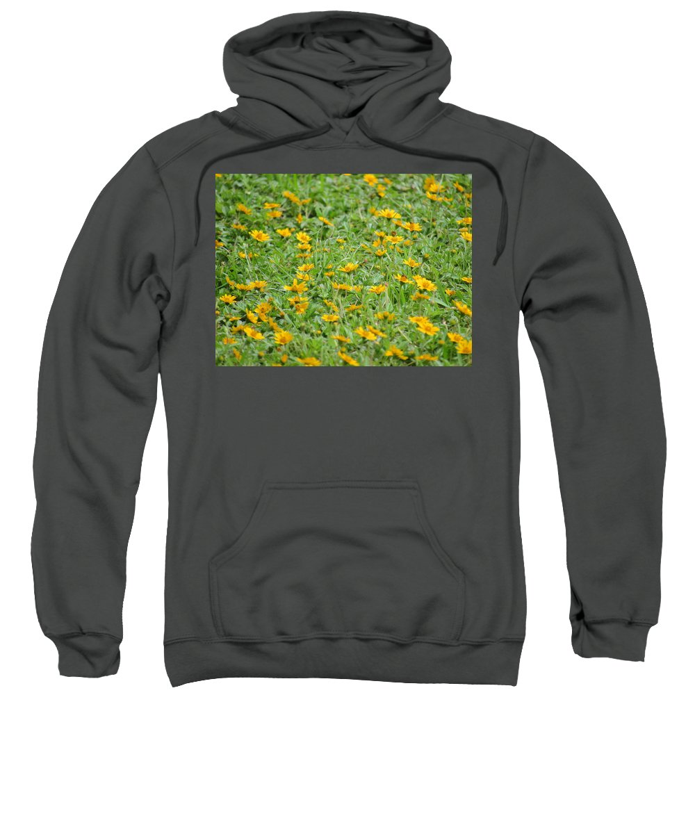 Flowers Sweatshirt featuring the photograph Flowers by Philip Wolfkill