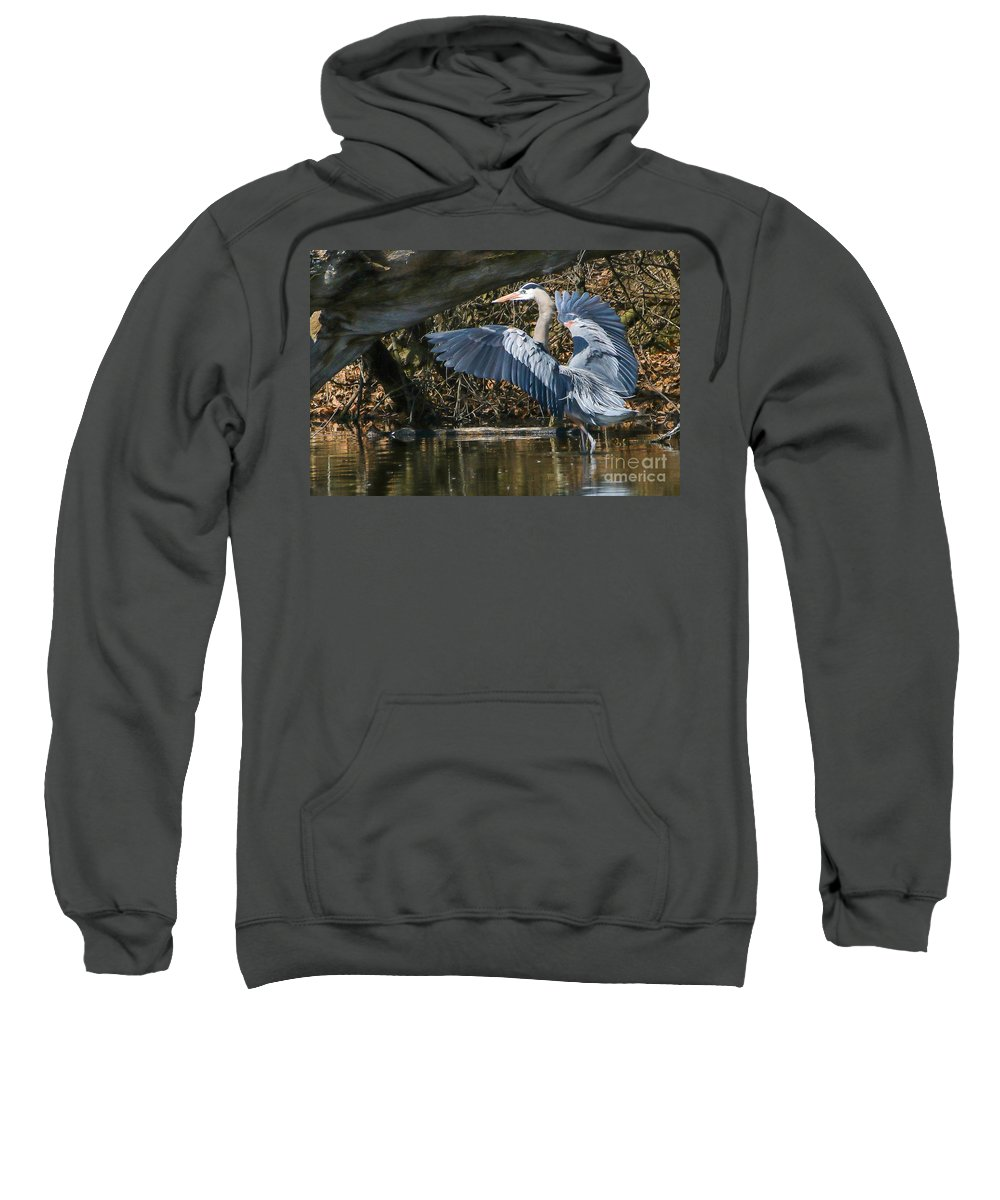 Heron Sweatshirt featuring the photograph Great Blue Heron by Susan Grube