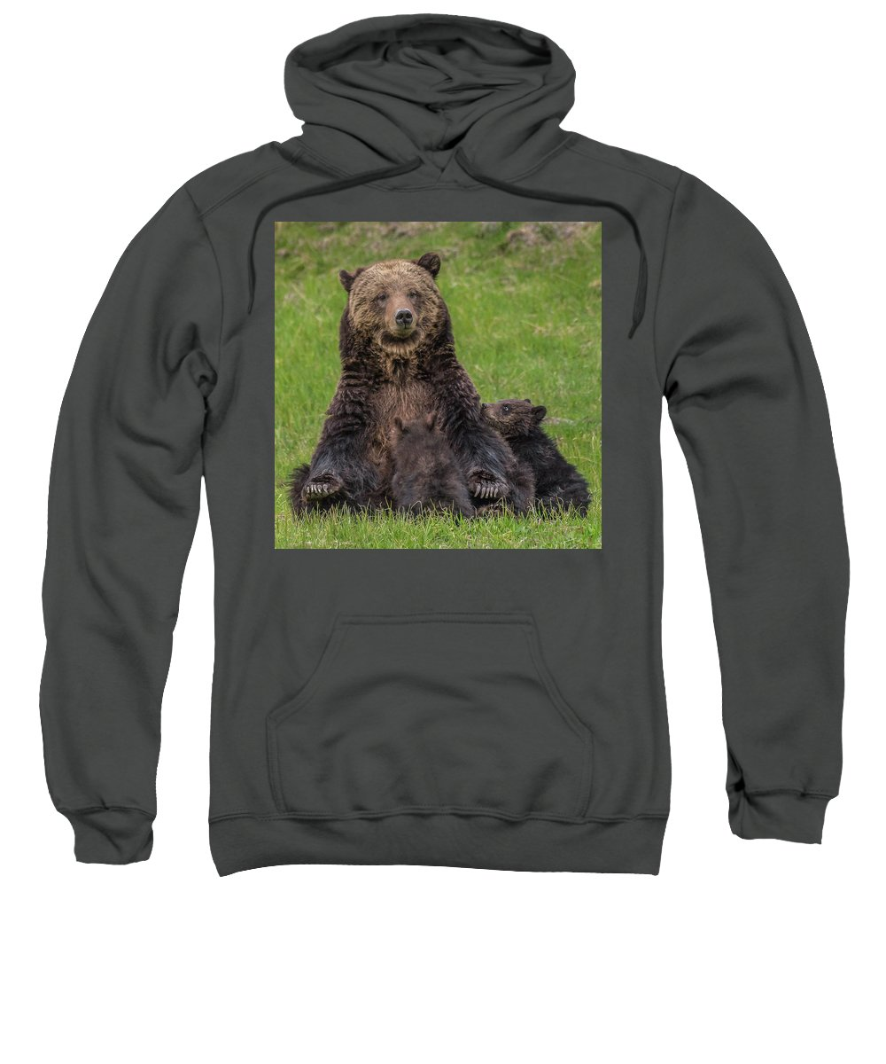 Grizzlies Sweatshirt featuring the photograph I Love My Mom by Yeates Photography