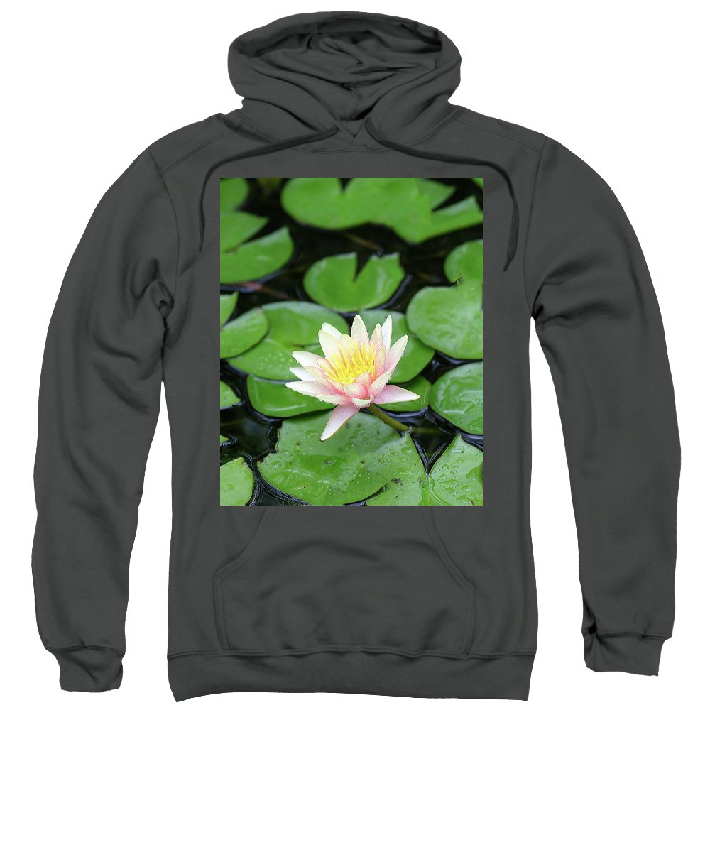 Lily Sweatshirt featuring the photograph Pretty In Pink by Shari Jardina