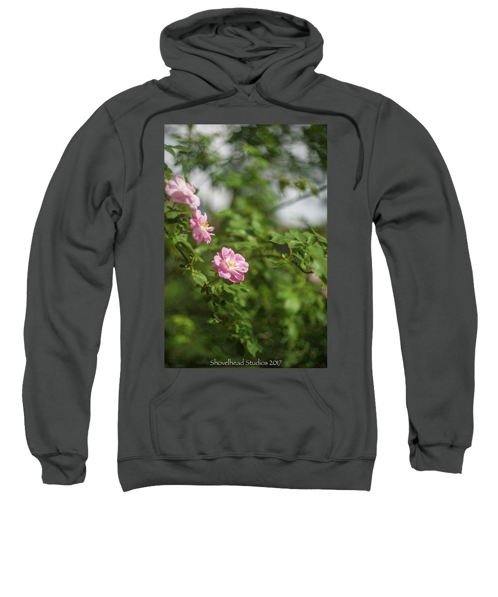 Rose Sweatshirt featuring the photograph Rose by Gary Brown