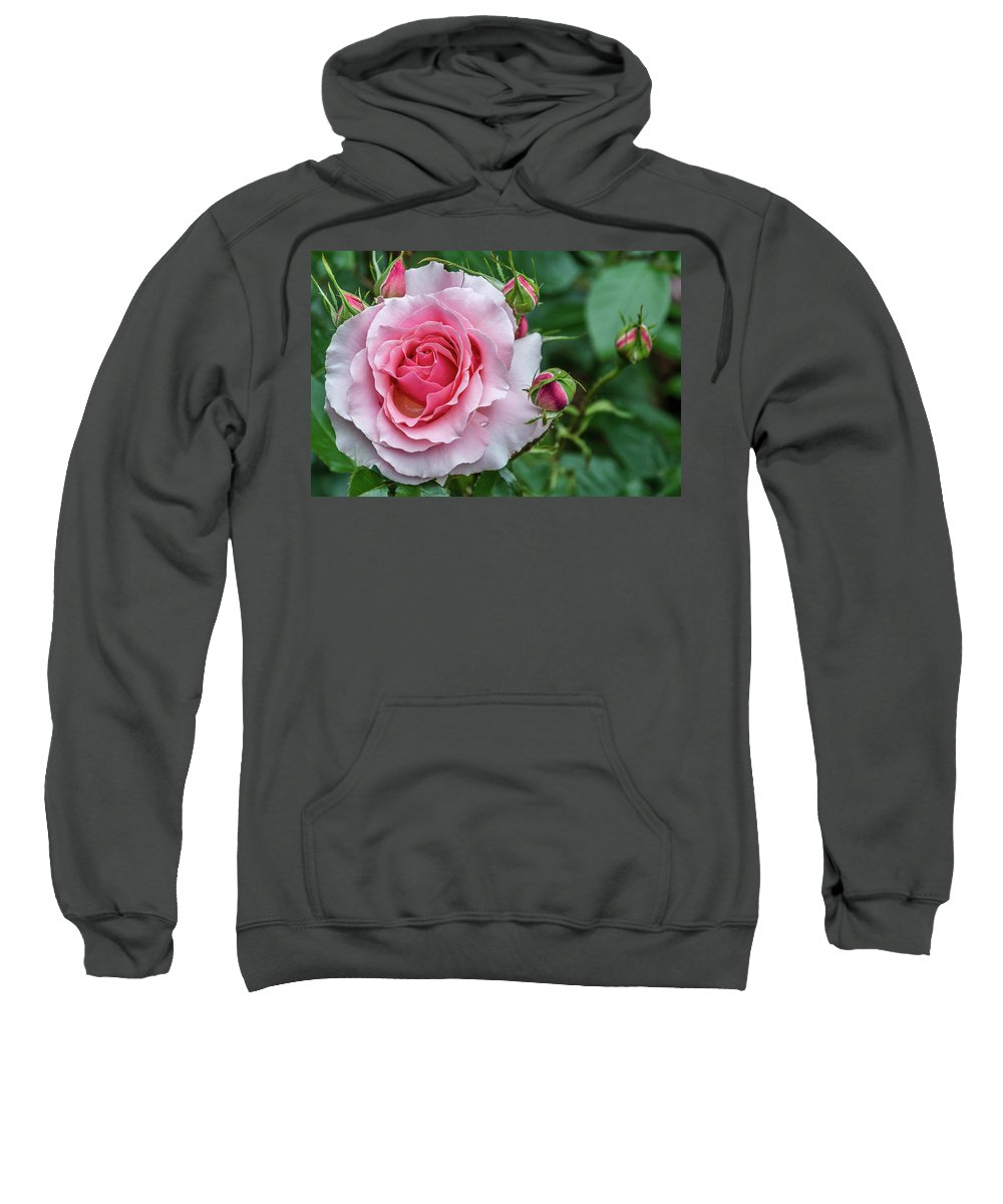 Gift Sweatshirt featuring the photograph Rose by Irena Kazatsker