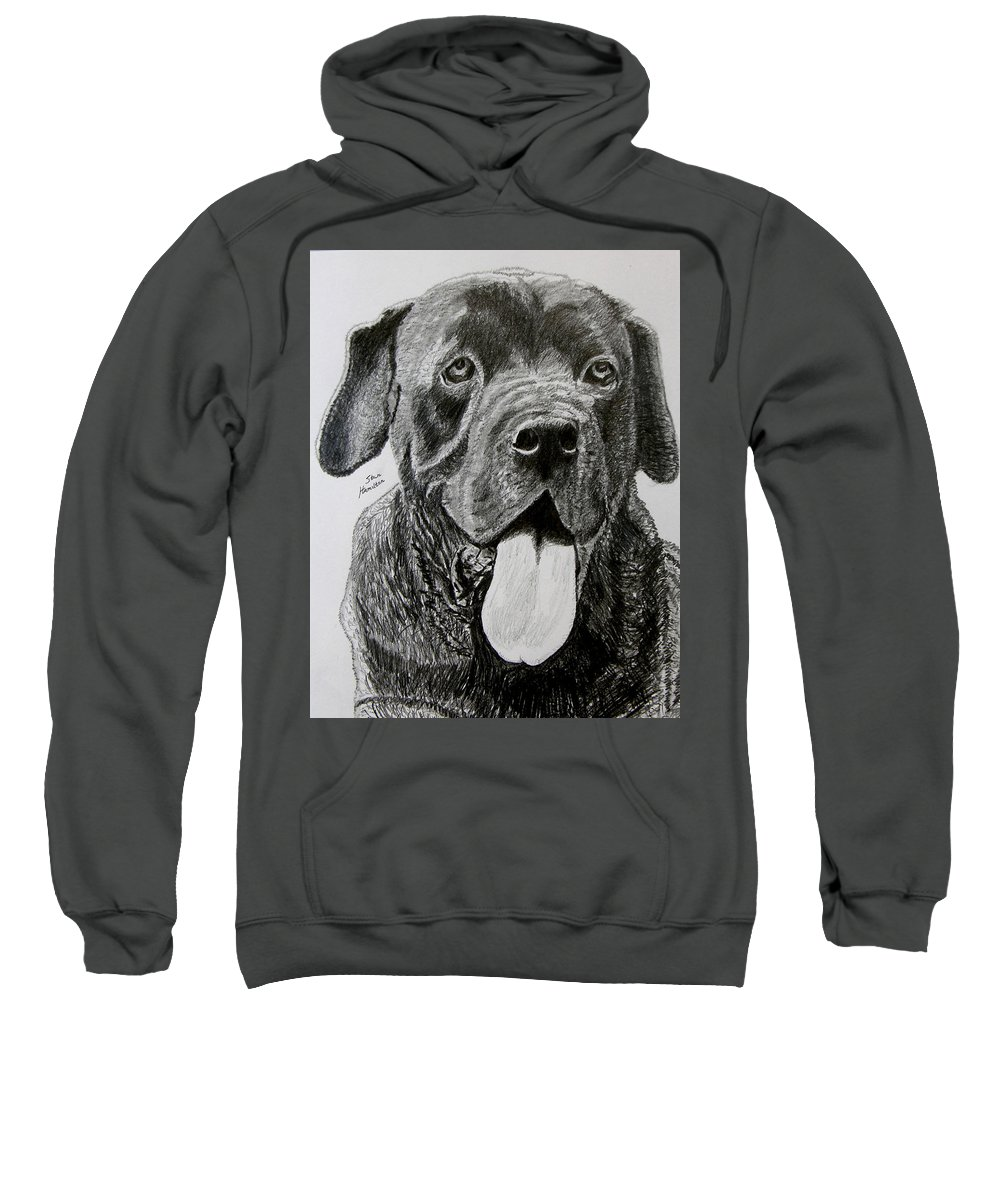 Dog Portrait Sweatshirt featuring the drawing Sampson by Stan Hamilton