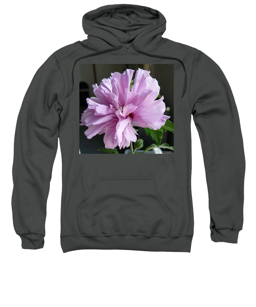 Phoyography.hibiscus Flower Floral Bloom Bush Pink Sweatshirt featuring the photograph So Pink by Karin Dawn Kelshall- Best