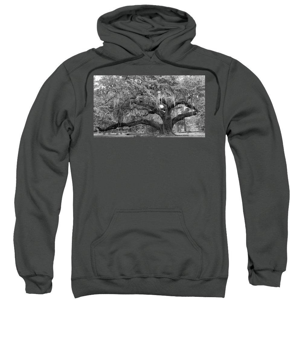 Tree Sweatshirt featuring the digital art Sprawling Live Oak by DigiArt Diaries by Vicky B Fuller