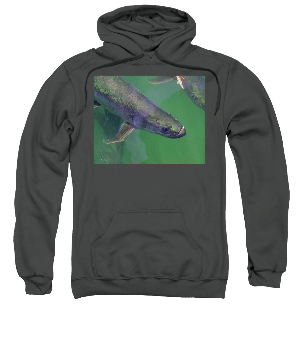 Charles Sweatshirt featuring the photograph Tarpon by Charles Harden