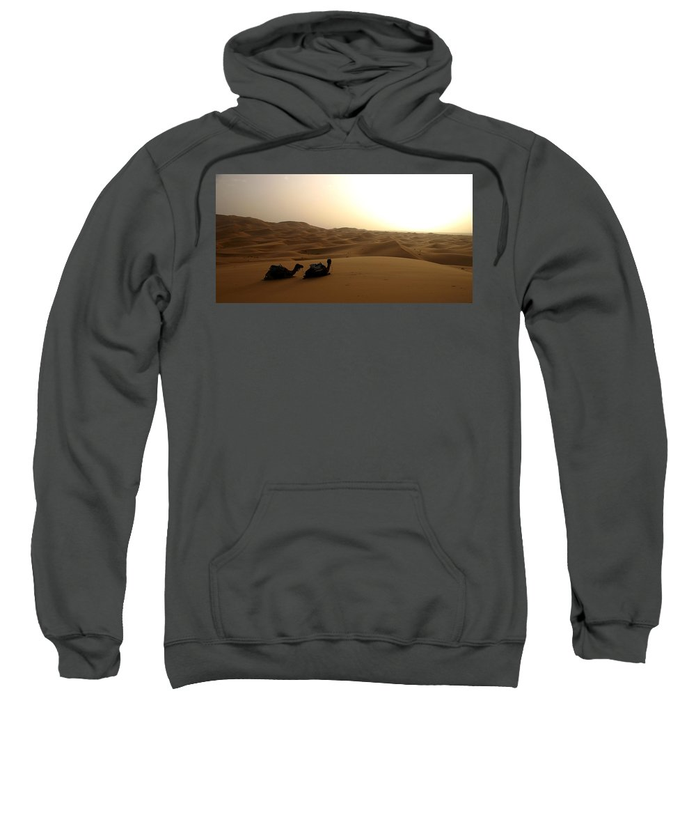 Camel Sweatshirt featuring the photograph Two Camels At Sunset In The Desert by Ralph A Ledergerber-Photography