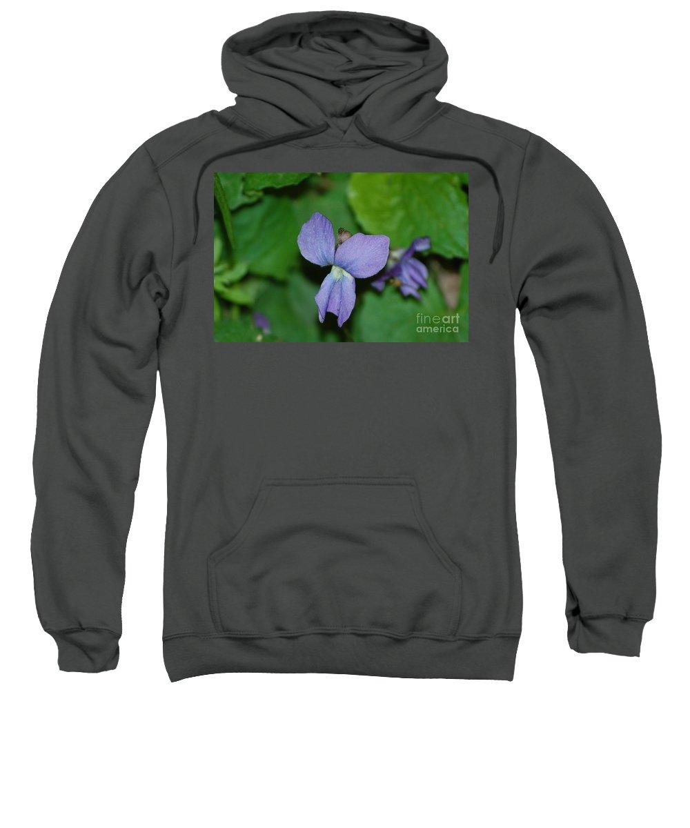Landscape Sweatshirt featuring the photograph Violet by David Lane