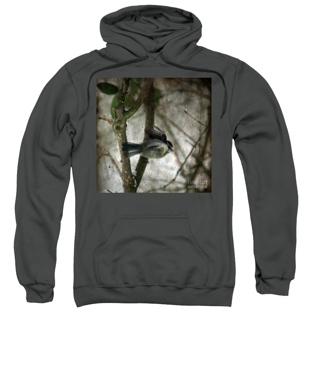 Blue Tit Sweatshirt featuring the photograph Waiting For Spring by Angel Ciesniarska