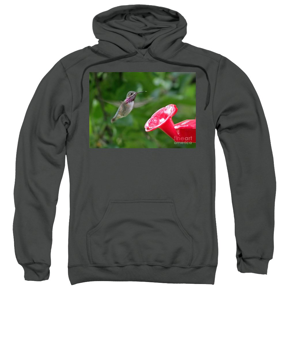 Hummingbird Sweatshirt featuring the photograph Welcome To The Garden by Carol Groenen