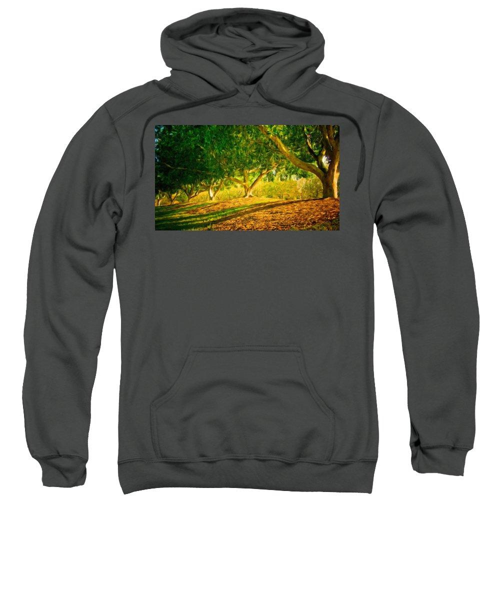 Landscape Sweatshirt featuring the painting Nature Art Original Landscape Paintings by World Map