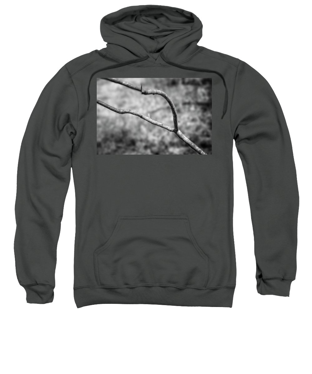 Lichen Sweatshirt featuring the photograph Bare Tree Branches In Early Spring by Donald Erickson