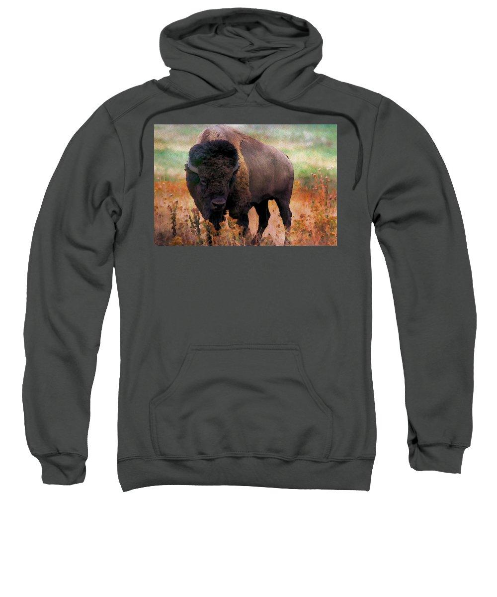Animal Sweatshirt featuring the digital art Bison by Nadezhda Zhuravleva