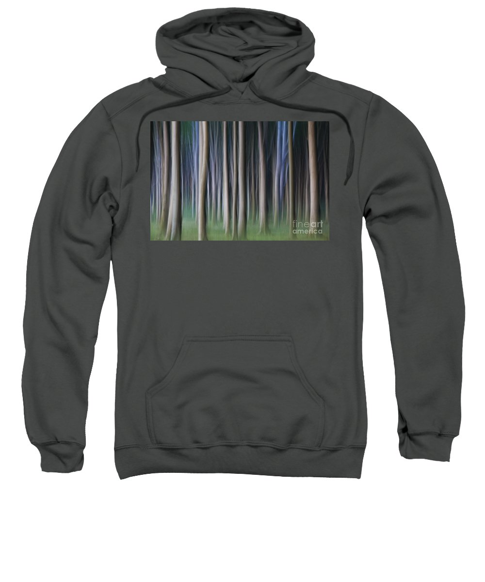 Abstract Sweatshirt featuring the photograph 150403p262 by Arterra Picture Library