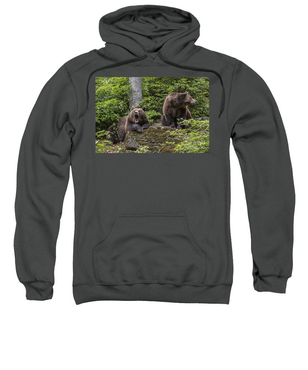 Two Sweatshirt featuring the photograph 150501p097 by Arterra Picture Library