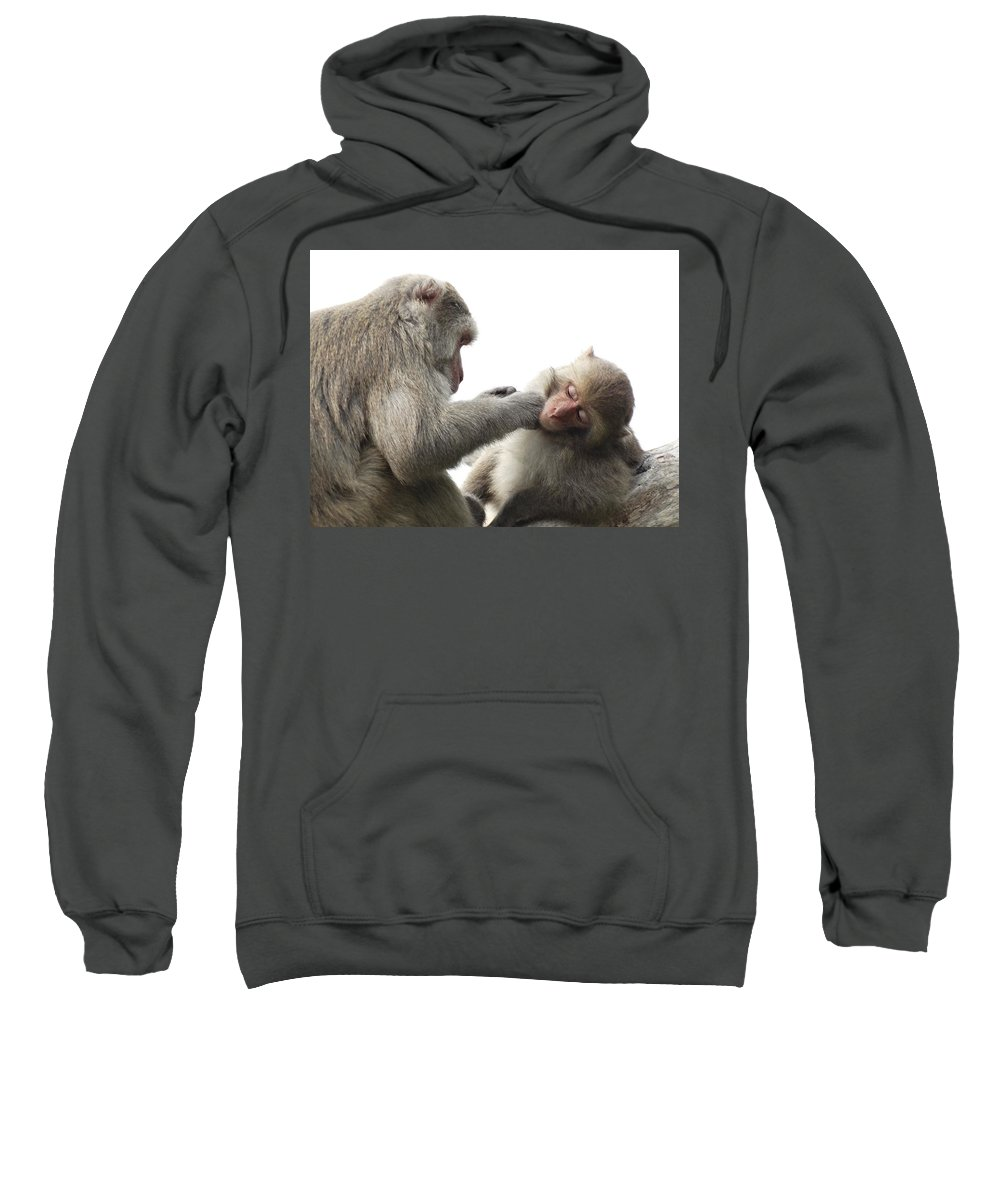 Monkey Sweatshirt featuring the photograph Monkey by FL collection