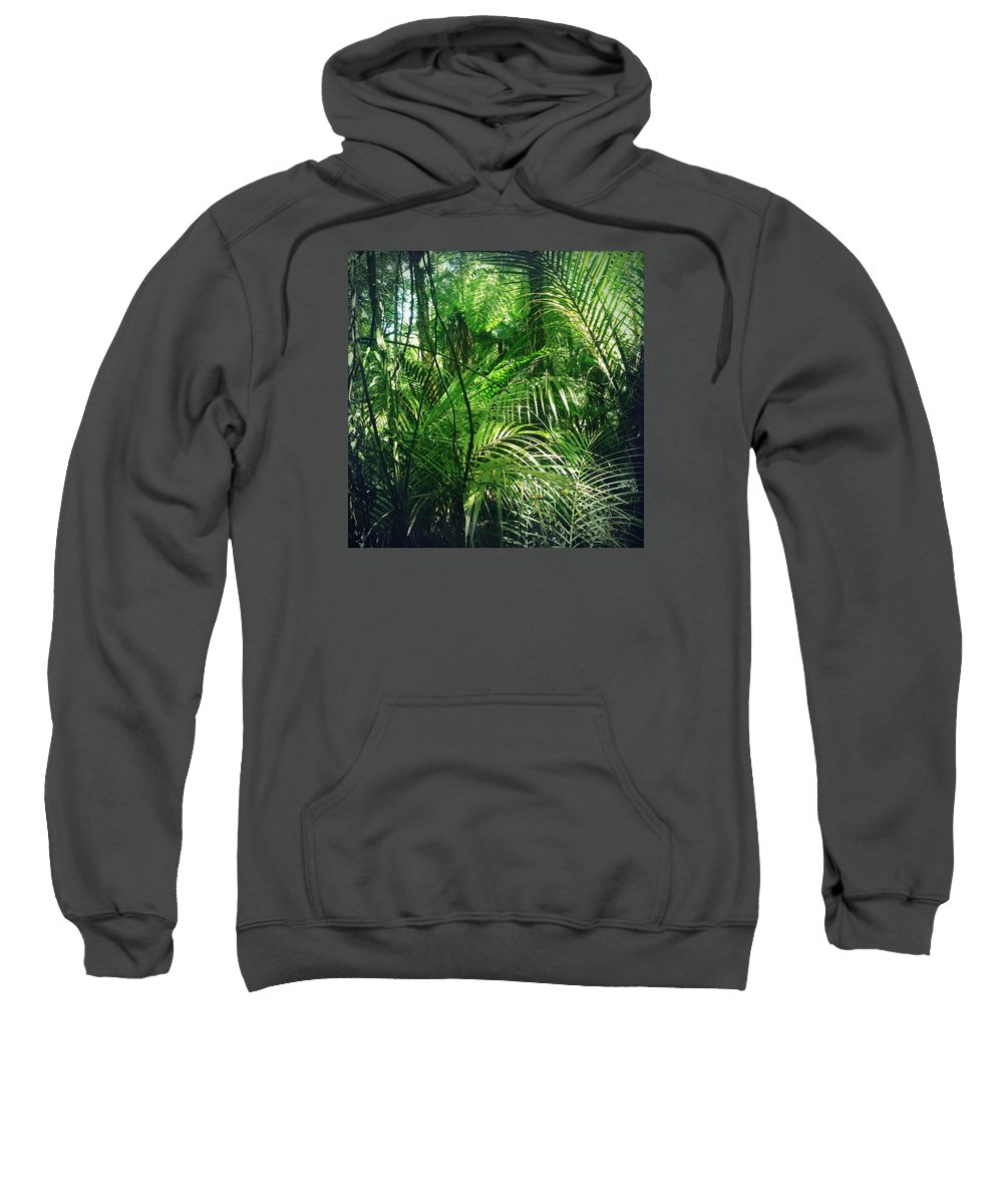 Rain Forest Sweatshirt featuring the photograph Jungle by Les Cunliffe