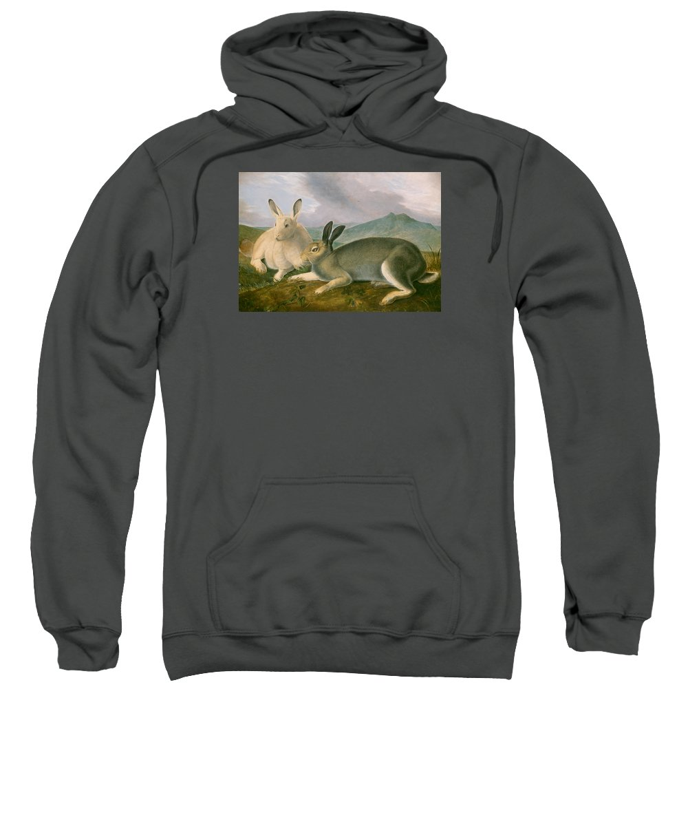Painting Sweatshirt featuring the painting Arctic Hare by Mountain Dreams