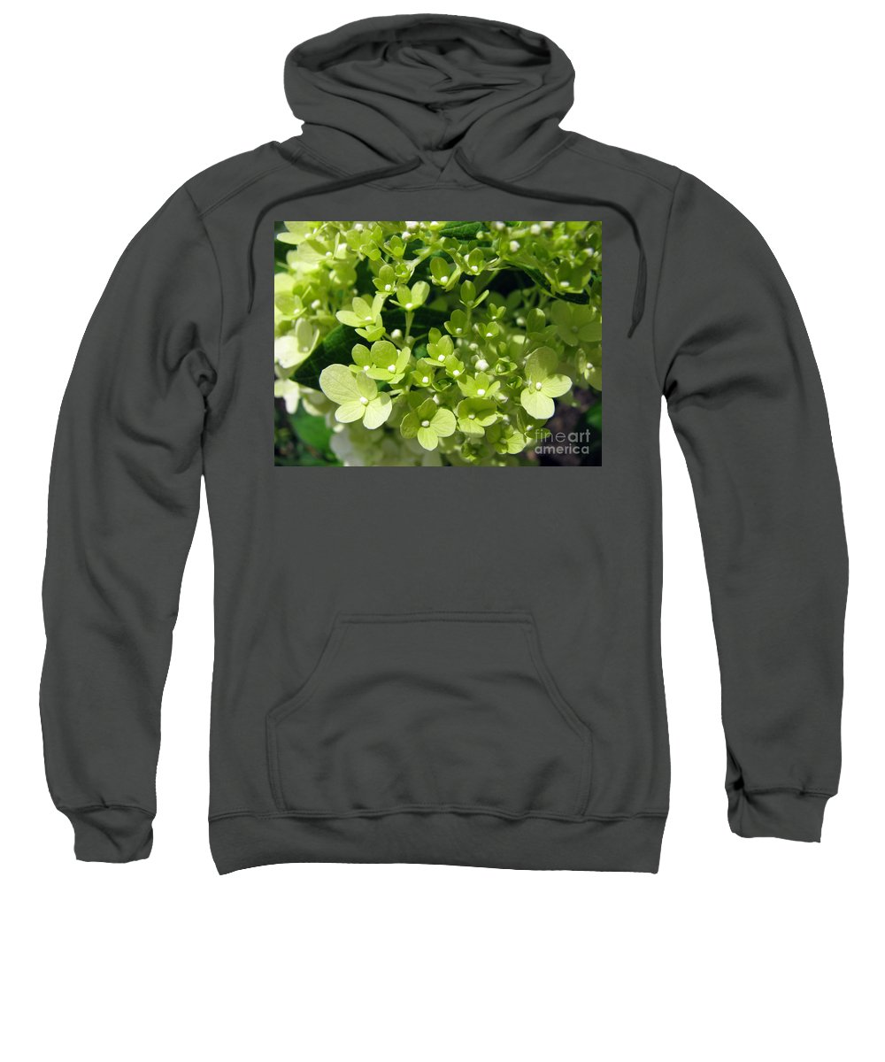 Hydrangea Sweatshirt featuring the photograph Hydrangea by Amanda Barcon