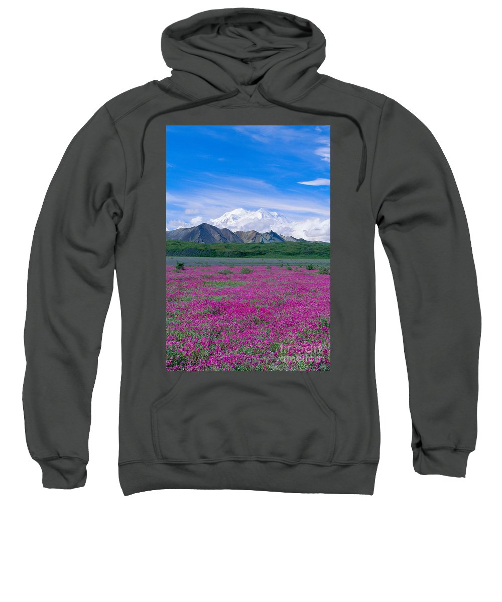 Alaska Sweatshirt featuring the photograph View Of Alaska by John Hyde - Printscapes