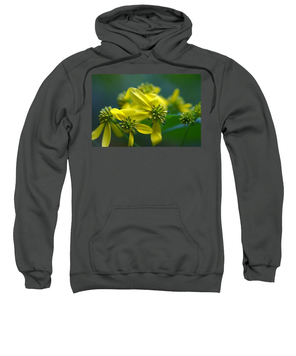 Background Sweatshirt featuring the photograph Yellow Wingstem by Jack R Perry