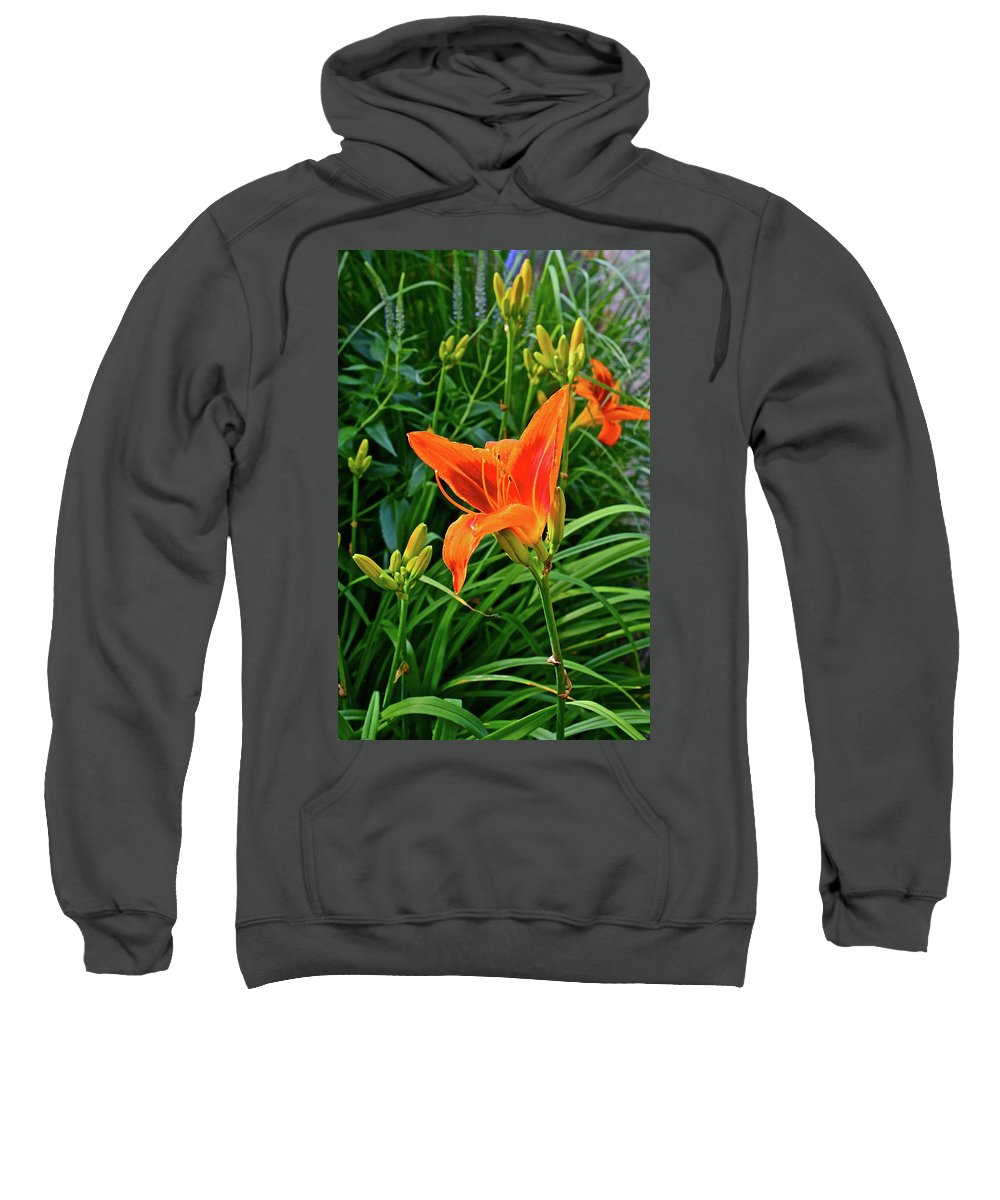Daylily Sweatshirt featuring the photograph 2016 July Garden Daylily Summer Afternoon by Janis Nussbaum Senungetuk