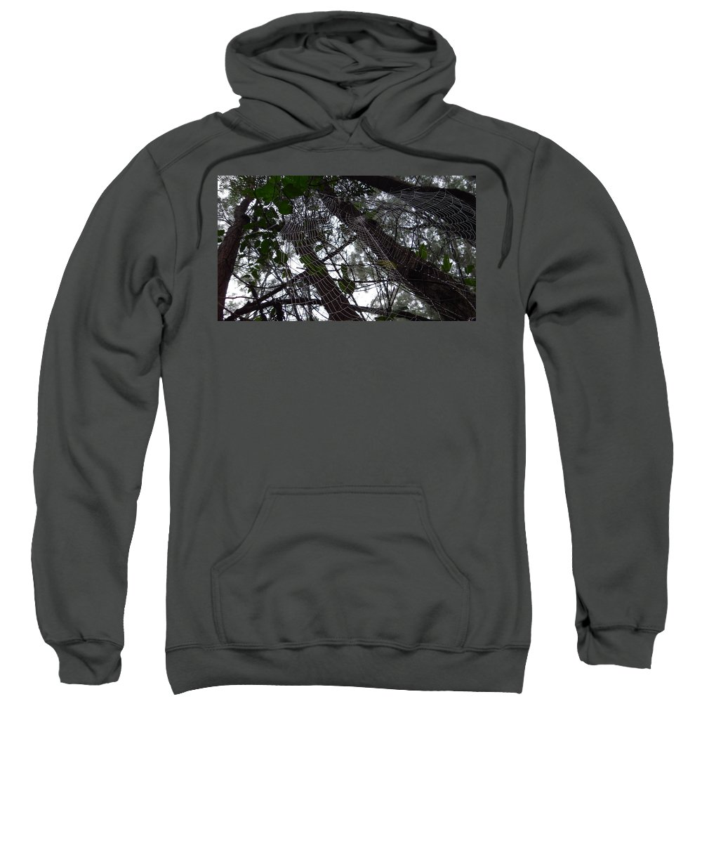 Australia Sweatshirt featuring the photograph Australia - Spider Web High In The Tree by Jeffrey Shaw
