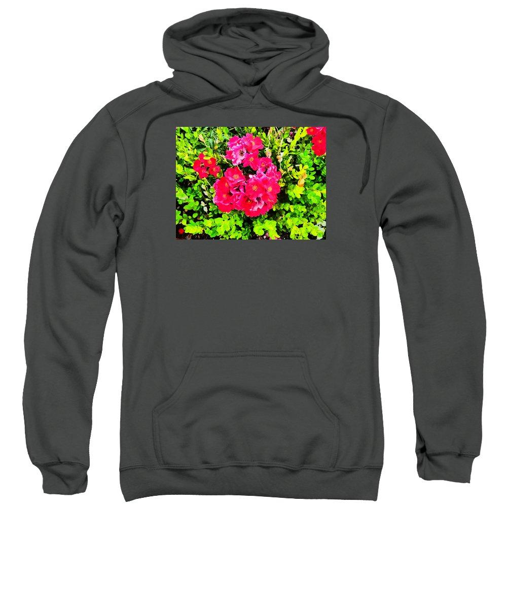 Flower Garden Idaho Photography Sweatshirt featuring the photograph Velvet Nights by Paul Stanner