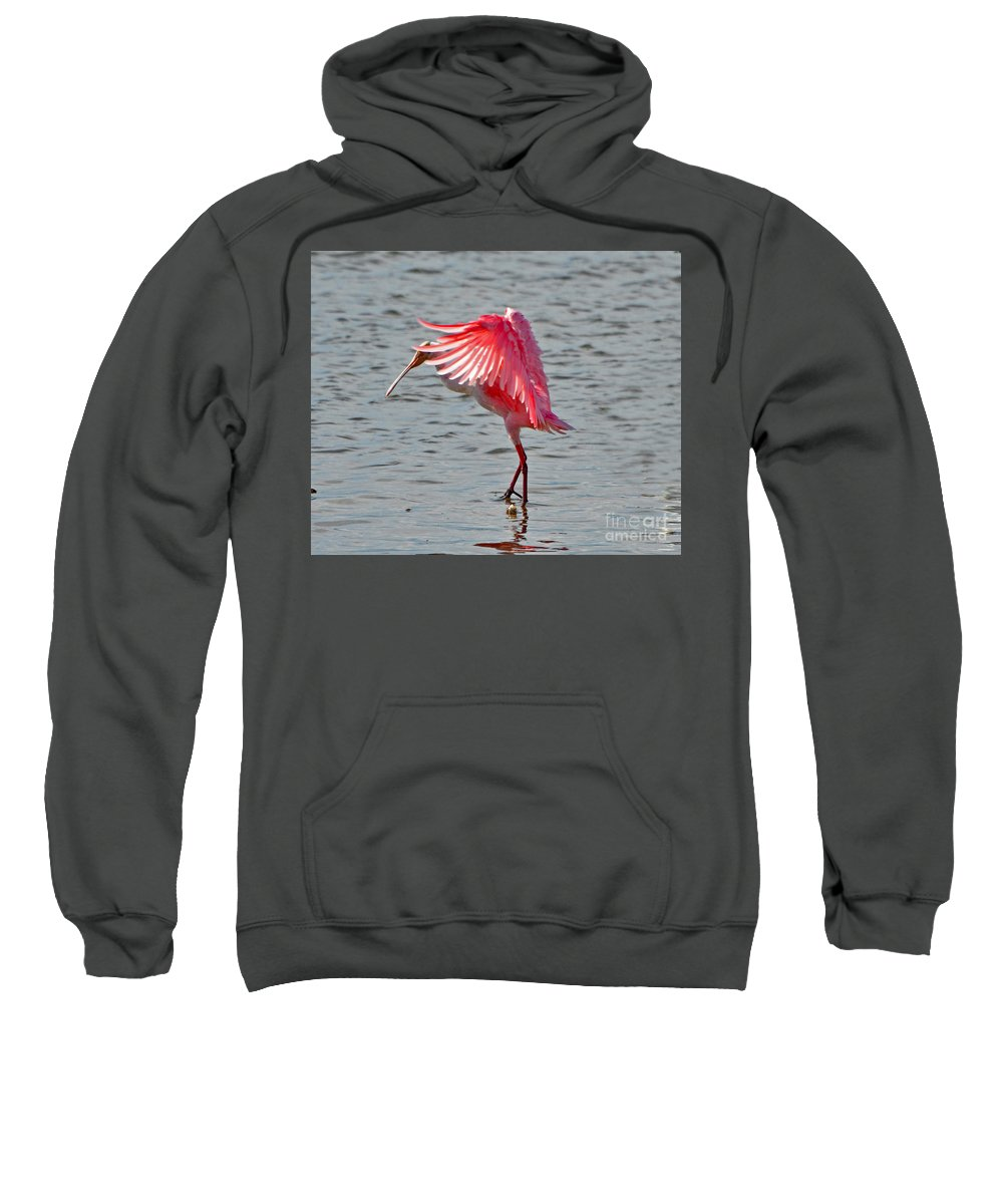Blurred Sweatshirt featuring the photograph 2432 by Don Solari