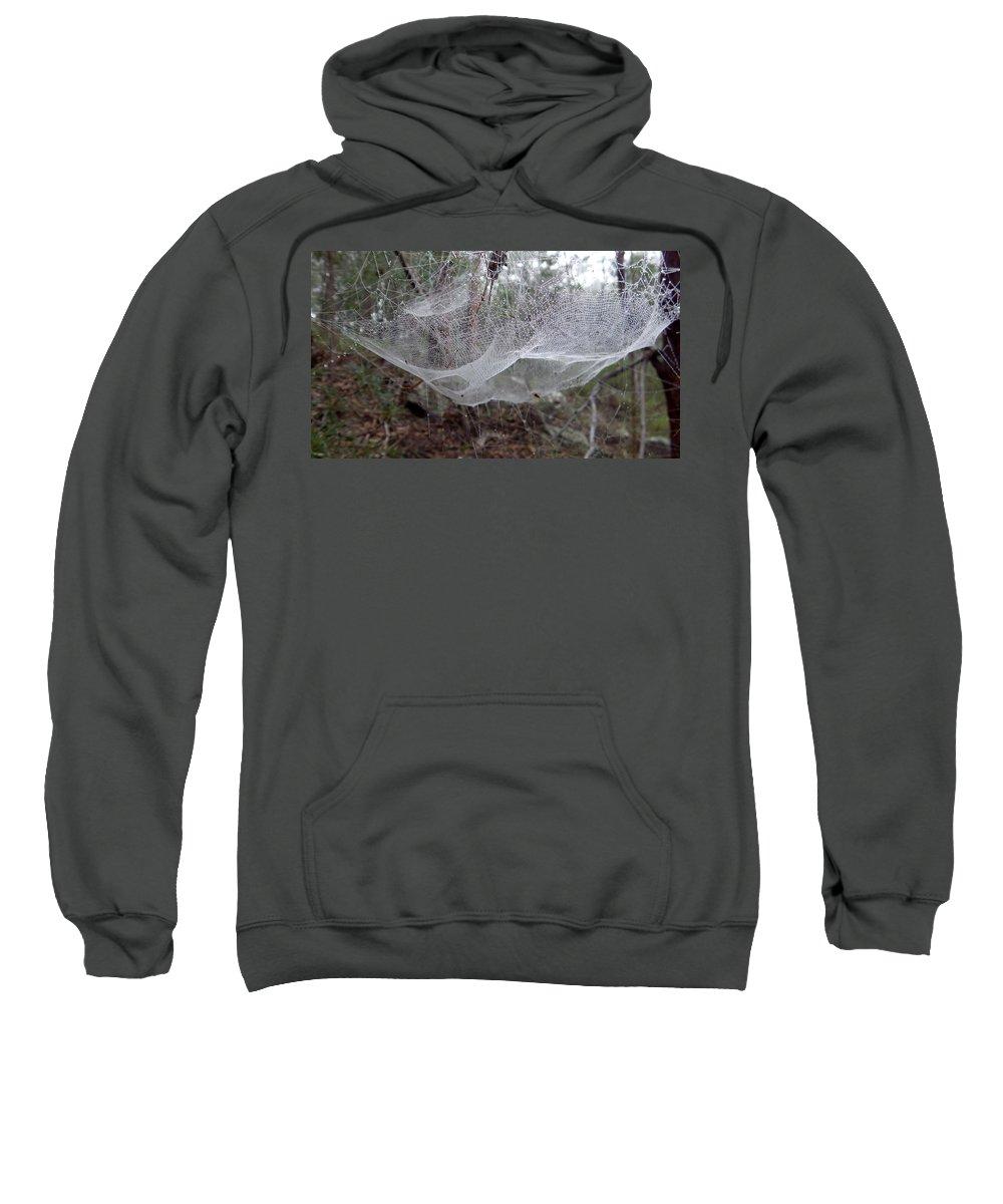 Australia Sweatshirt featuring the photograph Australia - Concave Spider Web by Jeffrey Shaw