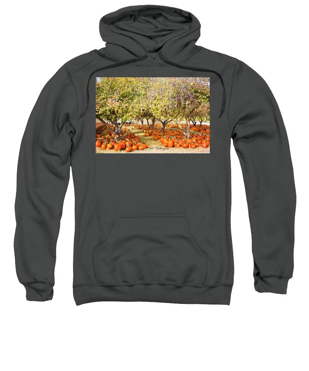 Autumn Sweatshirt featuring the digital art Autumn by Jill Wellington