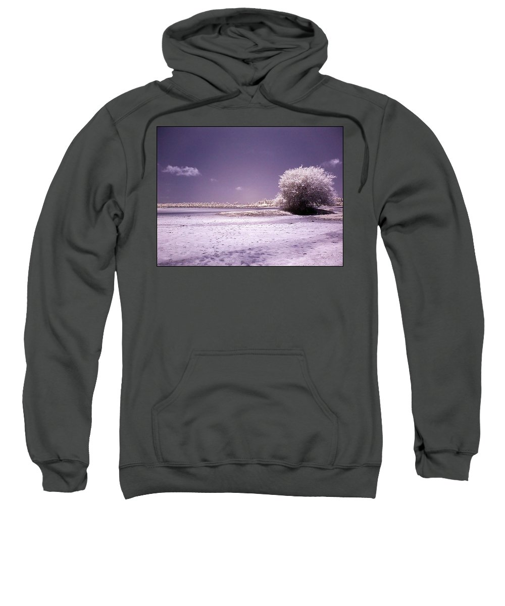 Infrared Sweatshirt featuring the photograph Desertic Tree by Galeria Trompiz