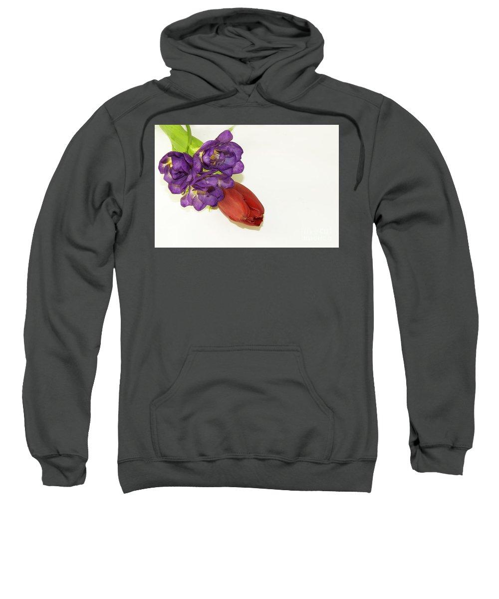 Flowers Sweatshirt featuring the photograph Freesia And Tulip by Elvira Ladocki