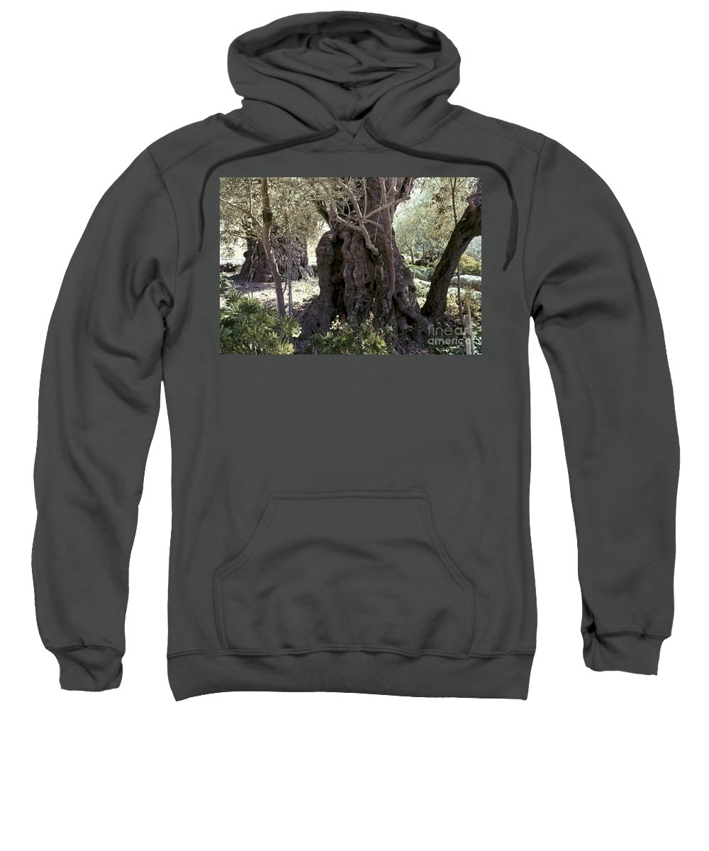Garden Sweatshirt featuring the photograph Holy Land: Jerusalem by Granger