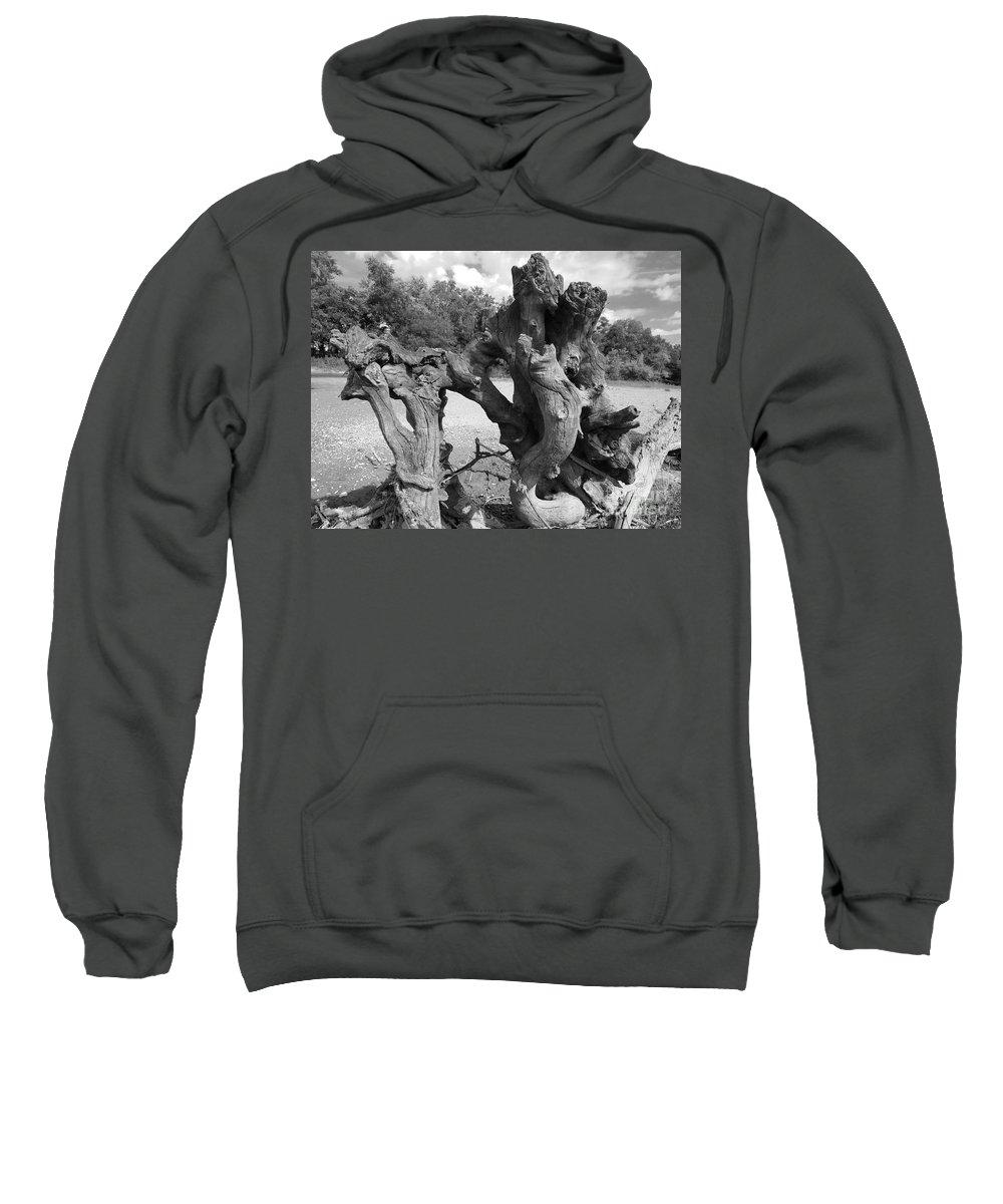 Driftwood Sweatshirt featuring the photograph Twisted Driftwood by Scott D Van Osdol
