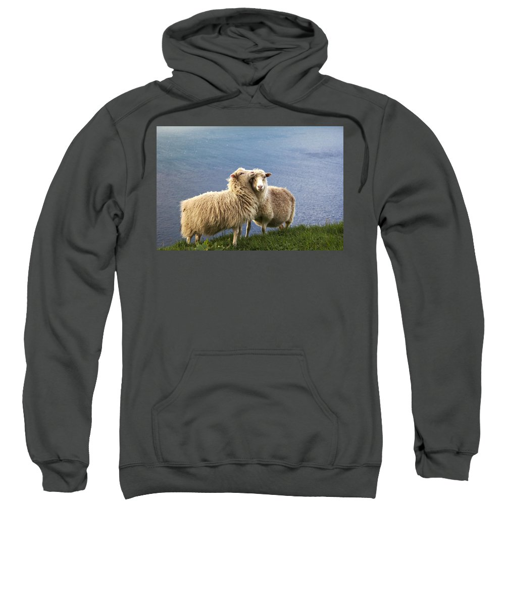 Air Sweatshirt featuring the photograph Wildlife by Pol Hansen