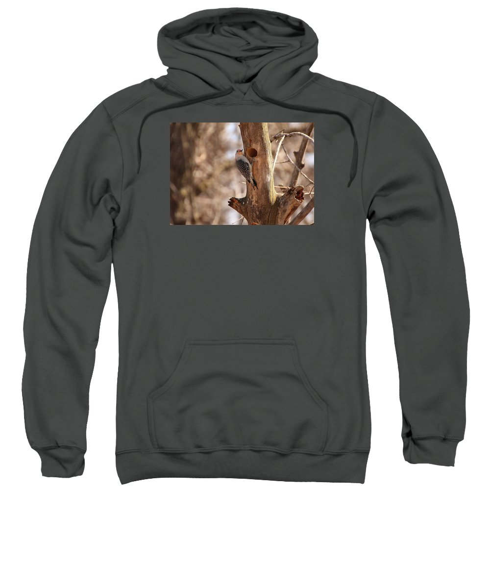 Black And White Photography Sweatshirt featuring the photograph Woodpecker by John Ohm