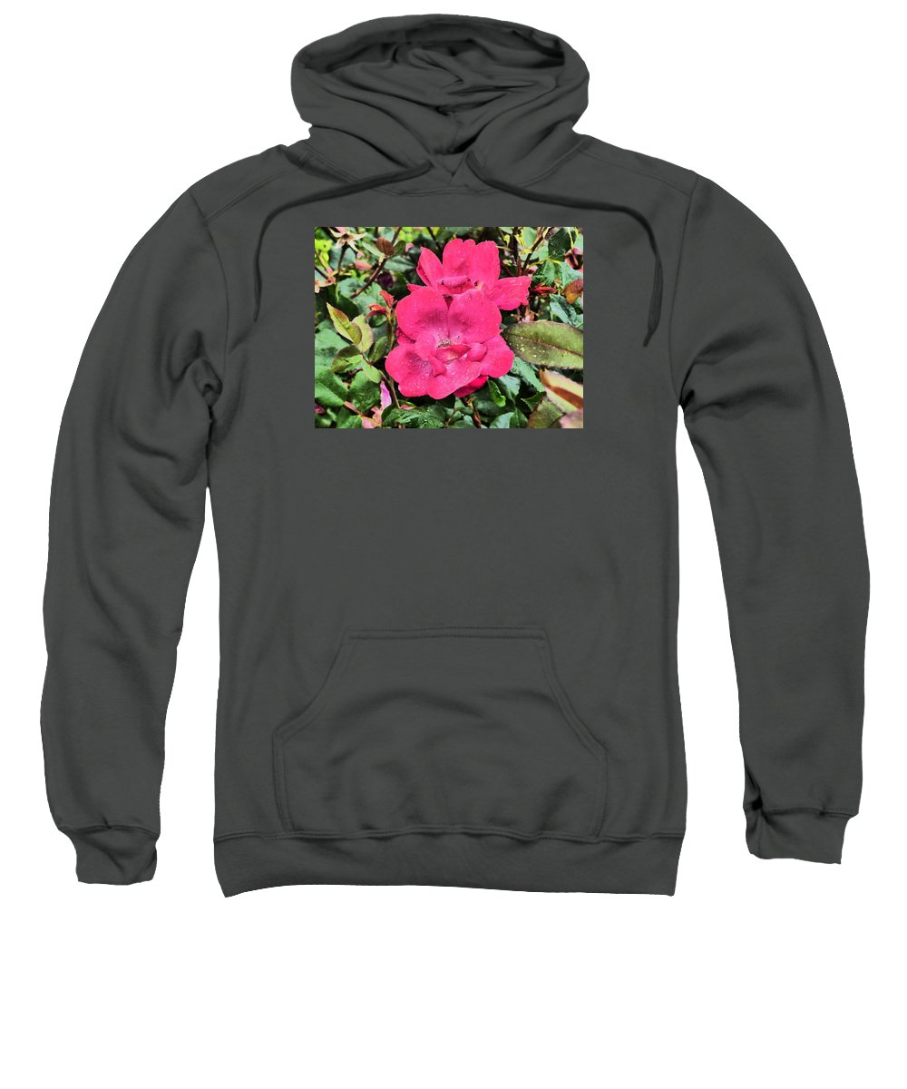 Flowers Gardens Idaho Photography Sweatshirt featuring the photograph Still by Paul Stanner