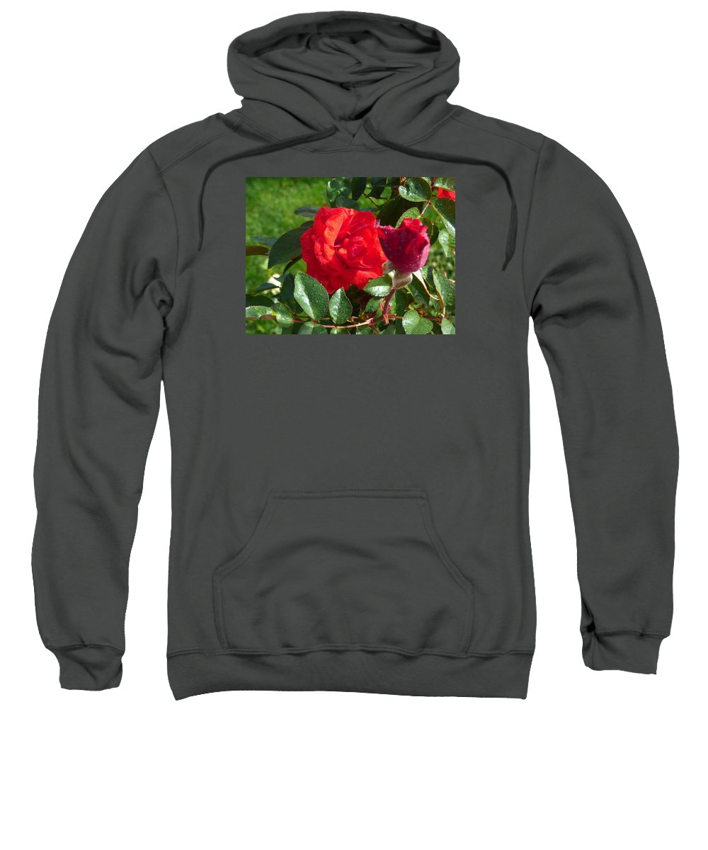 Flowers Gardens Idaho Photography Sweatshirt featuring the photograph La Vie En Rose by Paul Stanner