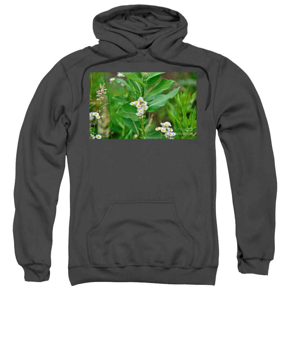 South Dakota Sweatshirt featuring the photograph 37453 by M Dale