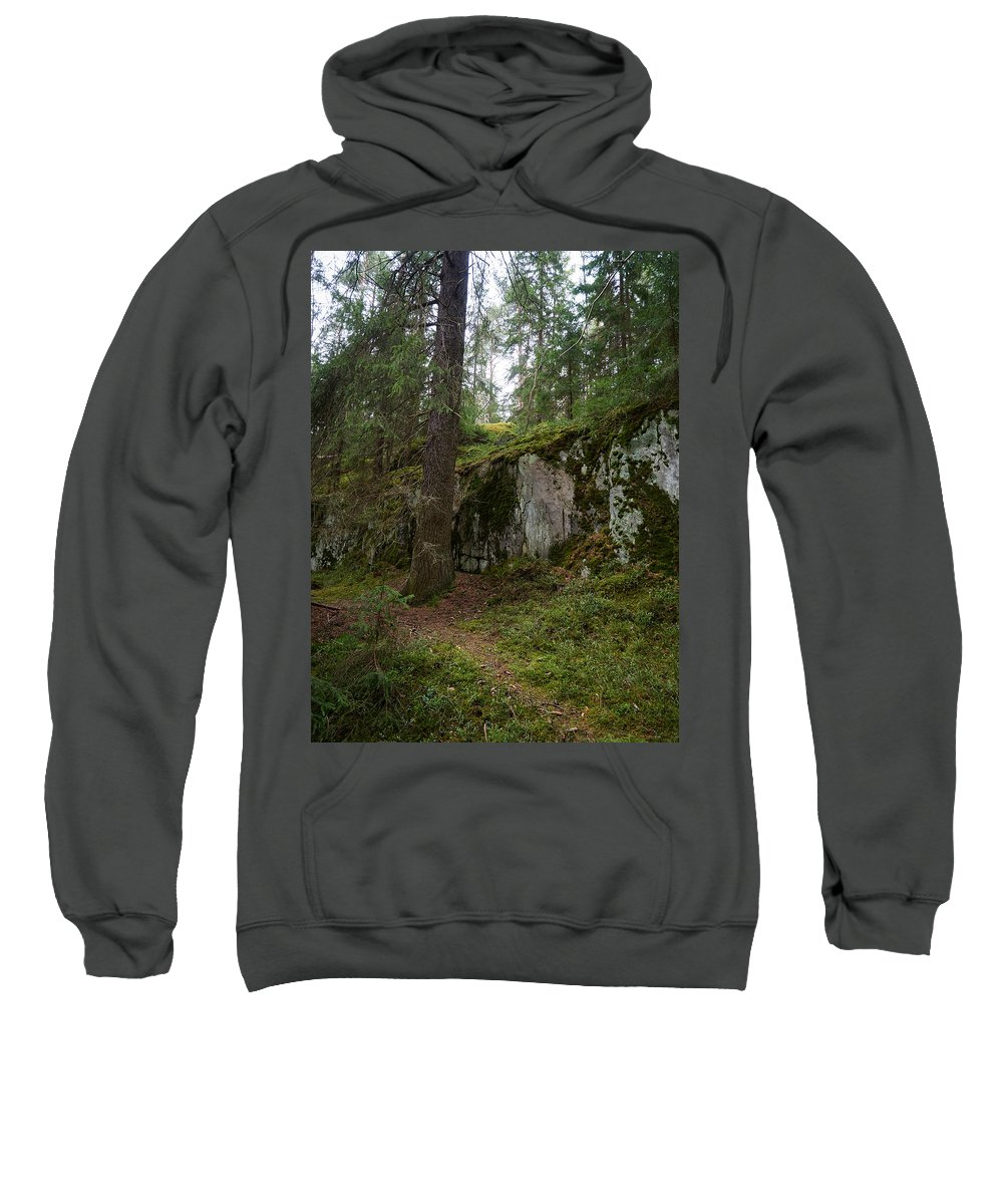 Finland Sweatshirt featuring the photograph Old Forest In Kauppi Tampere by Jouko Lehto