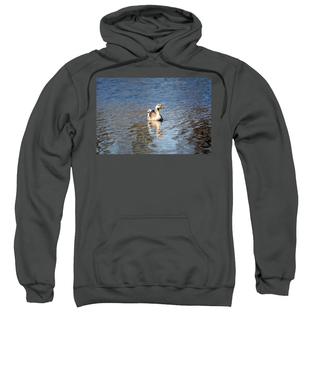 Swan Sweatshirt featuring the photograph Swan by Linda Kerkau