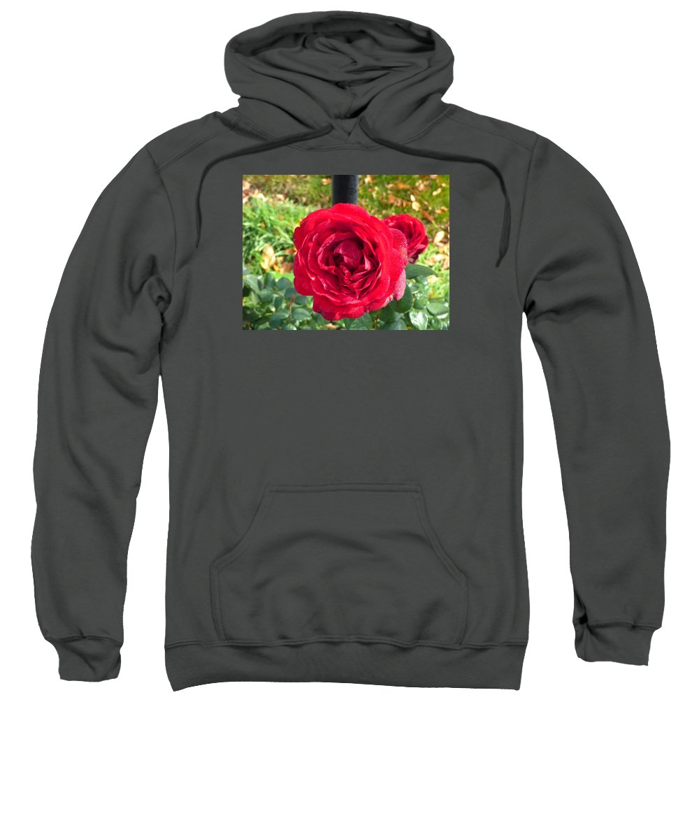 Flowers Garden Idaho Photography Sweatshirt featuring the photograph La Vie En Rose by Paul Stanner