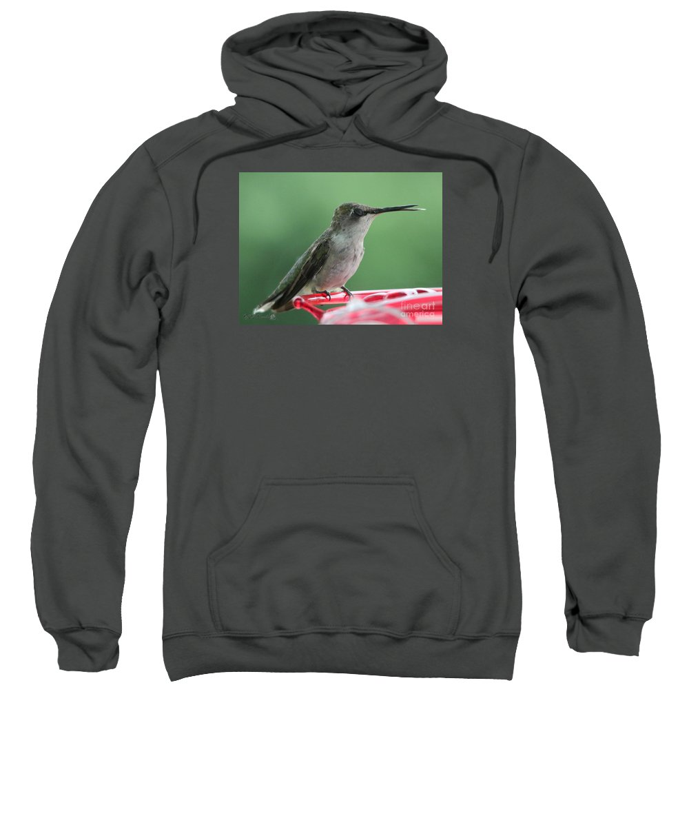 Mccombie Sweatshirt featuring the photograph Female Ruby-throated Hummingbird by J McCombie