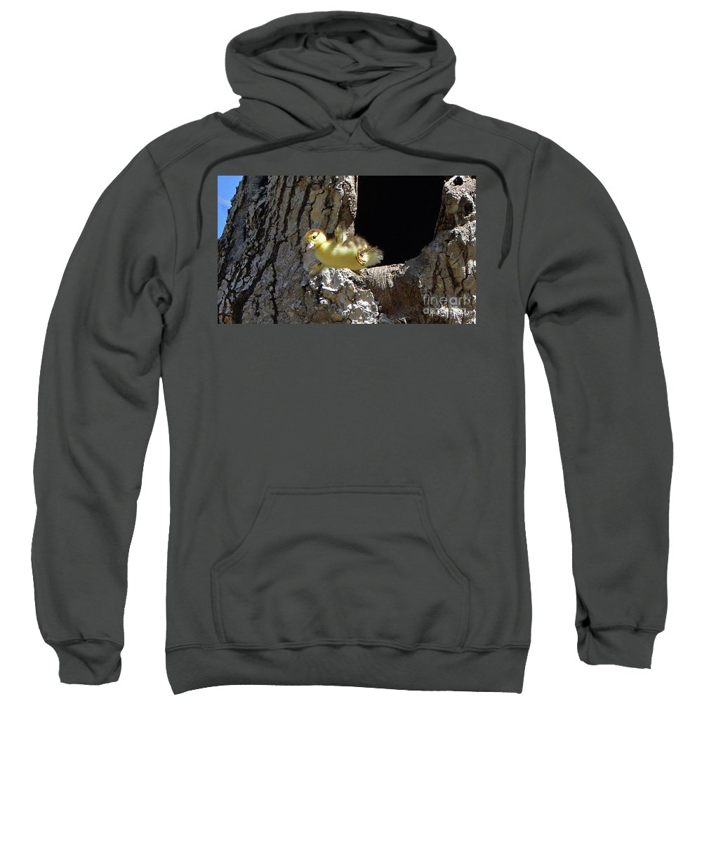 2/20/18 Sweatshirt featuring the photograph 8738 by Don Solari