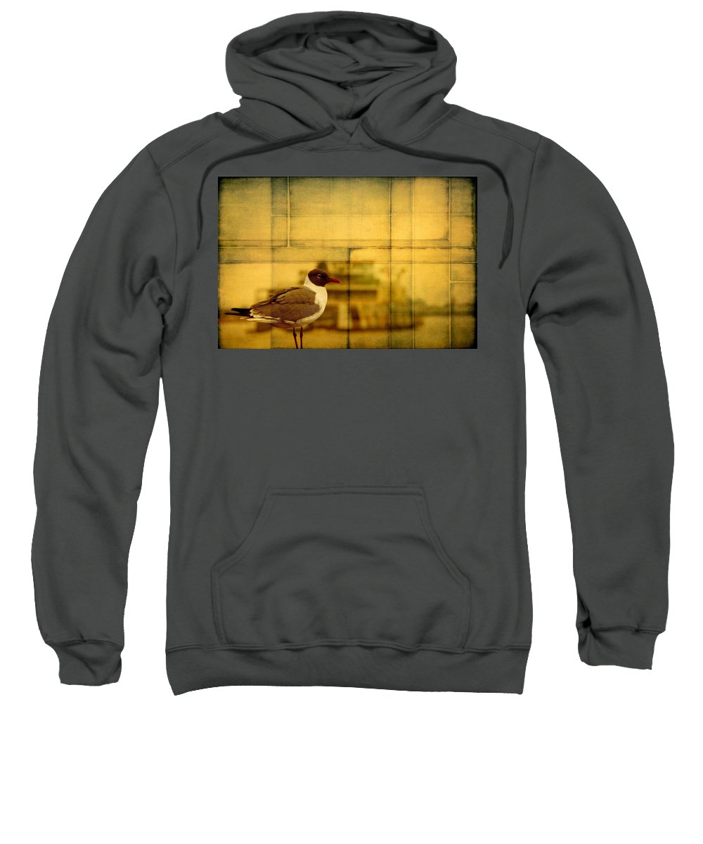 Alicegipsonphotographs Sweatshirt featuring the photograph A Bird In New Orleans by Alice Gipson