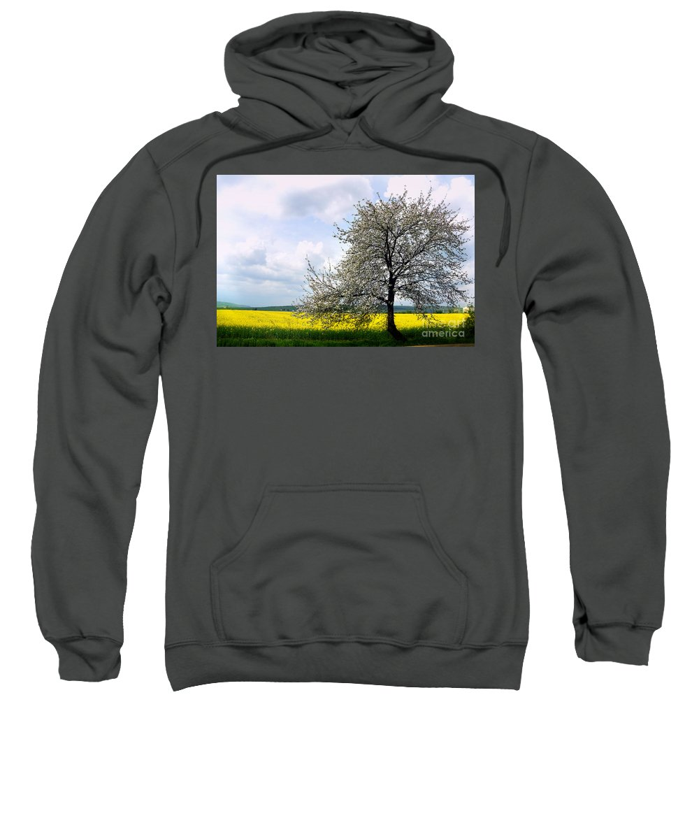 Blooming Tree Sweatshirt featuring the photograph A Blooming Tree In A Rapeseed Field by Camelia C