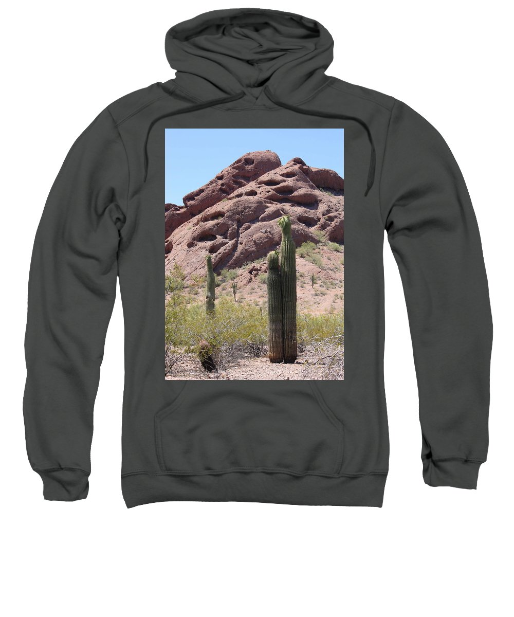 Phoenix Sweatshirt featuring the photograph A Couple Of Cacti In Phoenix by Carol Groenen