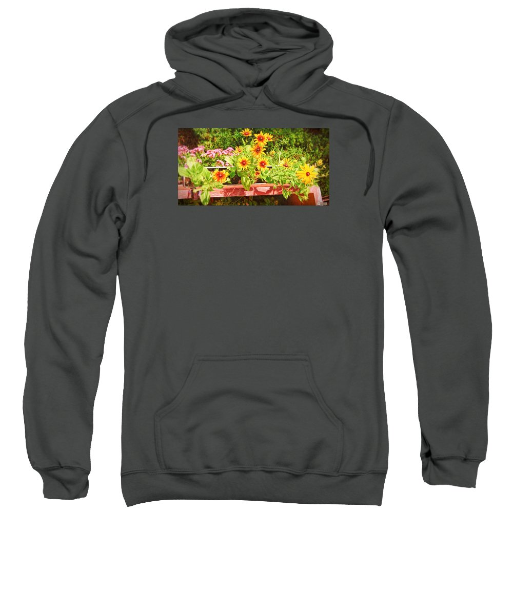 Landscape Sweatshirt featuring the photograph A Daisy Day by Earl Ricks